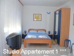 Studio Appartement 1 ***